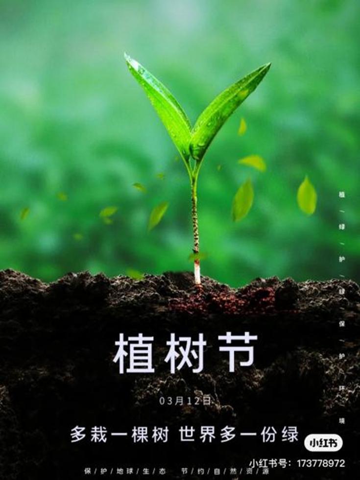 多栽一棵树,世界多一分绿